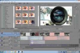 Sony Vega Pro 13